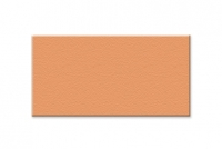 Ốp 117x240x9mm màu kem